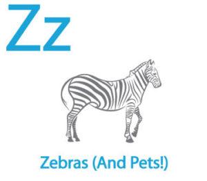 Z for Blog